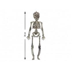 Esqueleto 30 cm.
