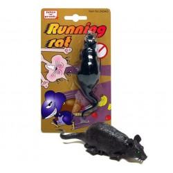 Raton corredor